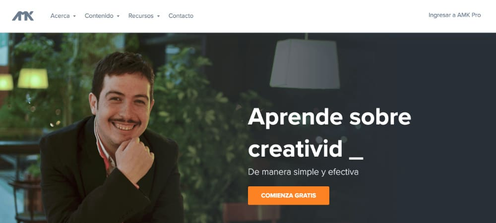 Diseñadores Web WordPress - Francisco-AMK