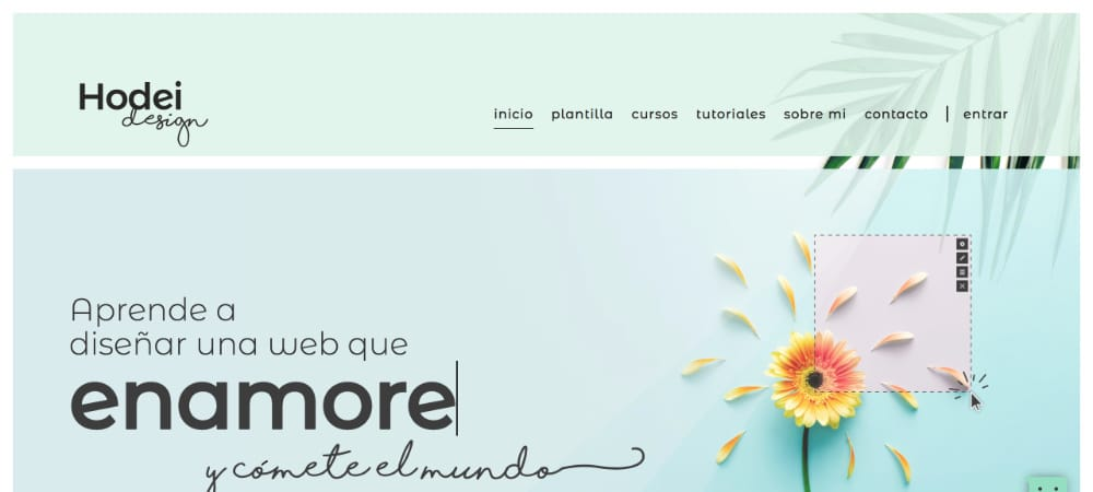 Diseñadores Web WordPress - Hodei-Design